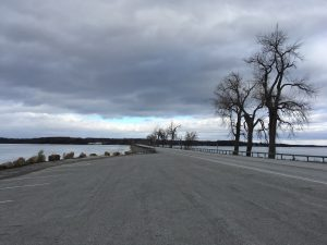 A road on a causeway with trees